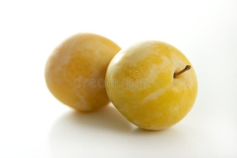 vit yellow för bakgrundsmirabelles royaltyfri bild