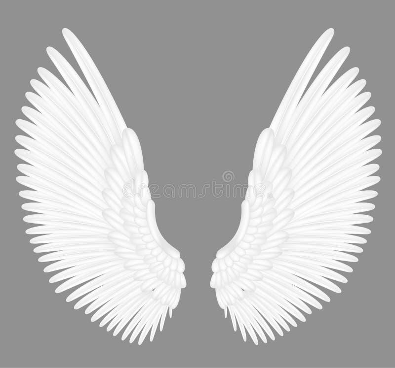 Vita ängelvingar royaltyfri illustrationer