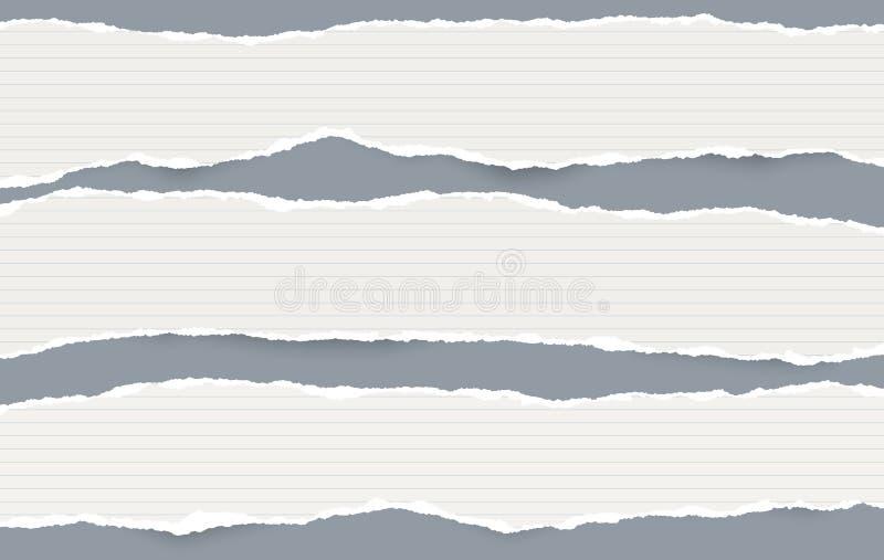 Vita avlånga fodrade pappers- remsor med sönderrivna kanter i horisontalposition, papper för anmärkning är på grå bakgrund vektor stock illustrationer