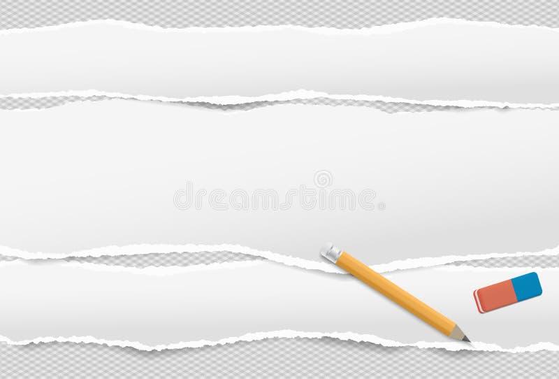 Vita avlånga pappers- remsor med den sönderrivna kanten i horisontalpositionspapper för anmärkningen som förläggas på kvadrerad b stock illustrationer