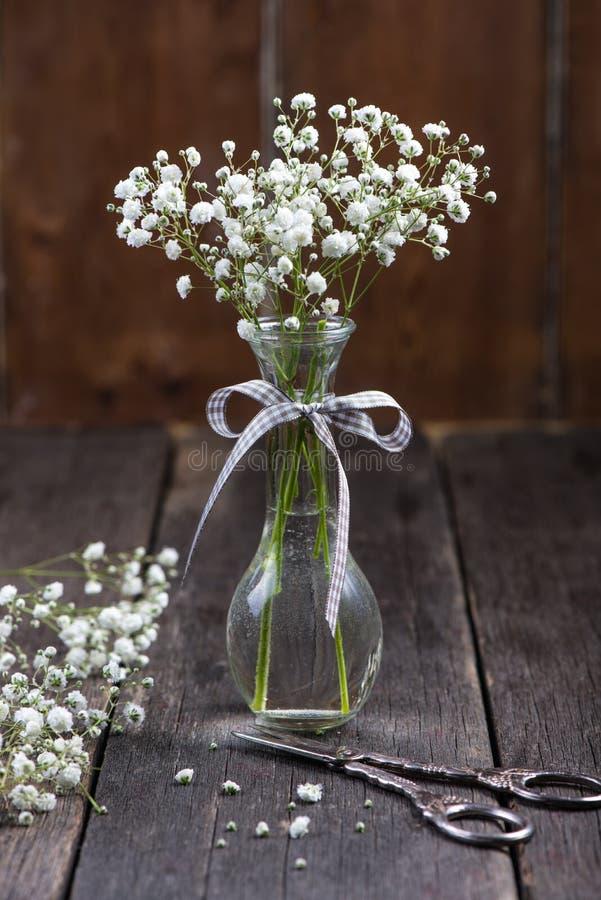 Vita blommor för ny lös äng i murarekrus royaltyfria bilder