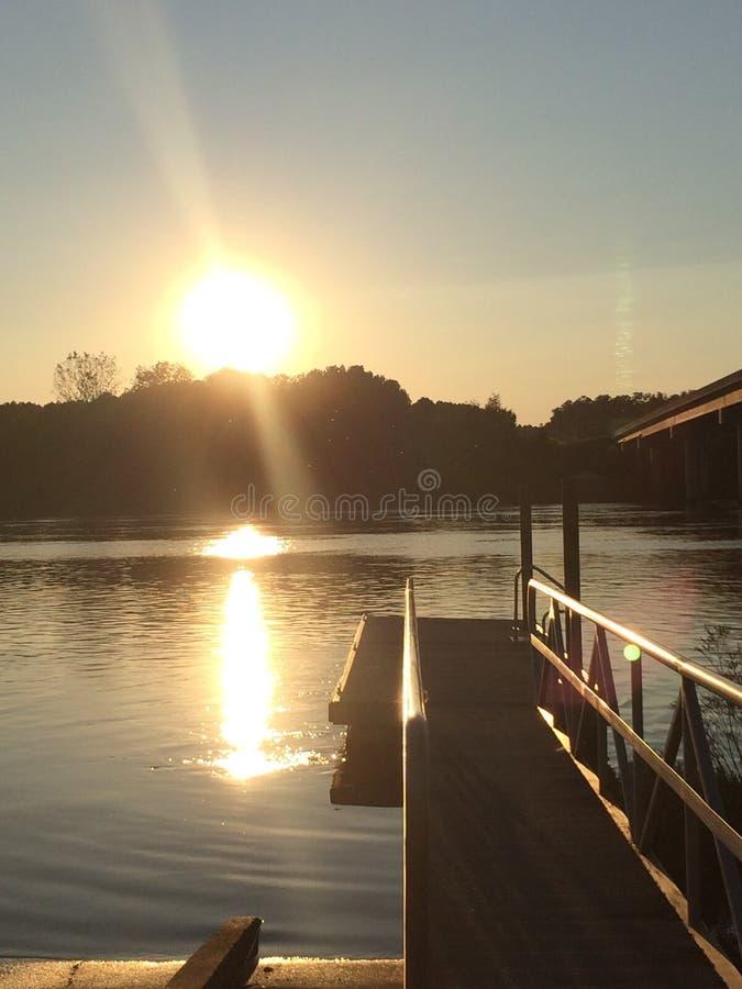 Vita del lago fotografia stock libera da diritti