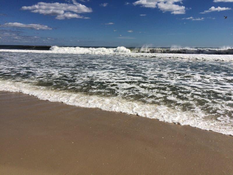 Vita della spiaggia fotografia stock