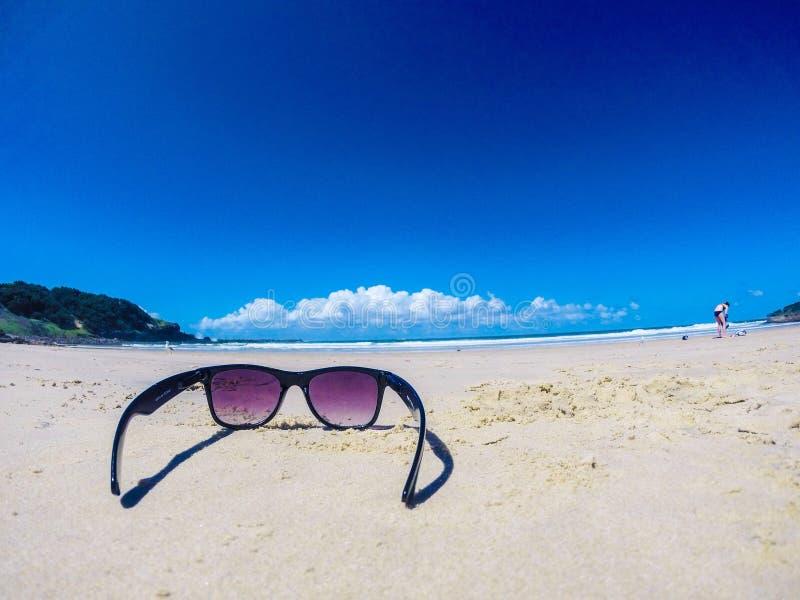 Vita della spiaggia immagini stock