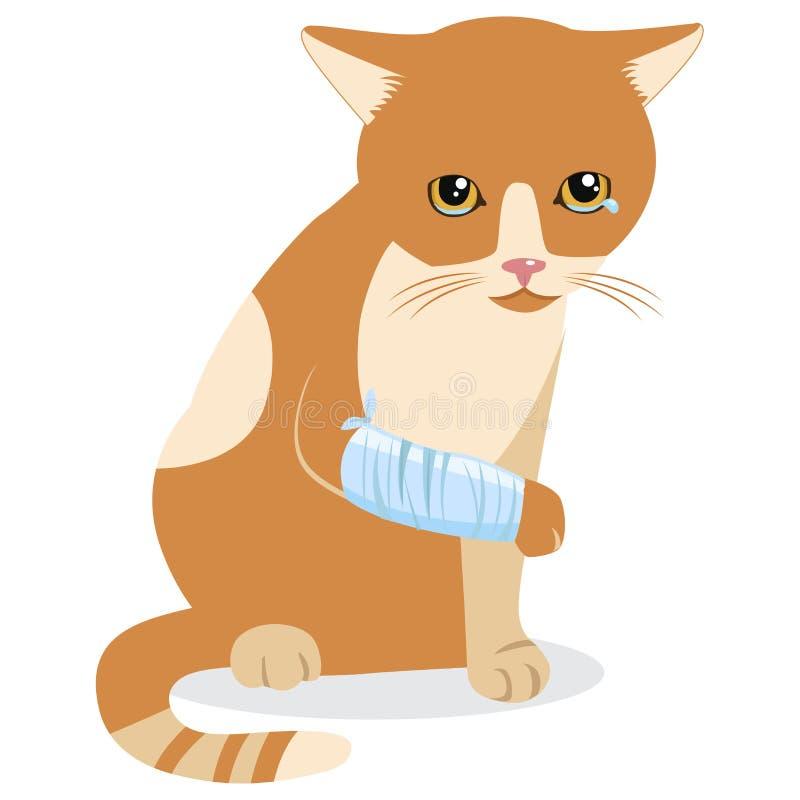 Vita di tristezza Strappi di disperazione Grido Cat With Splinting Leg illustrazione di stock