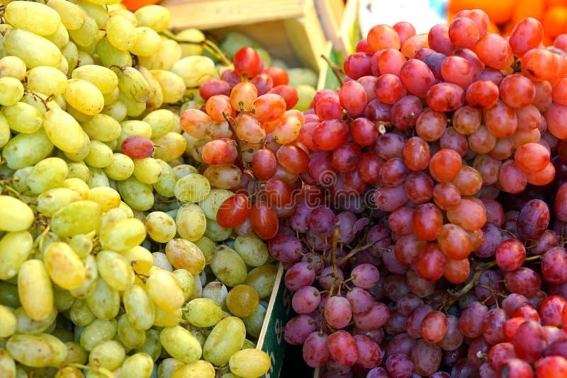Vita druvor och röda druvor, närbild arkivfoto