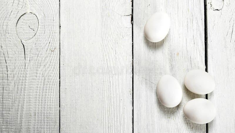 vita fega ägg arkivbild
