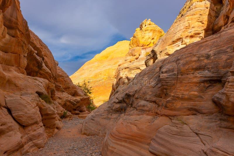 Vita kupoler på dalen av branddelstatsparken, Nevada royaltyfri fotografi