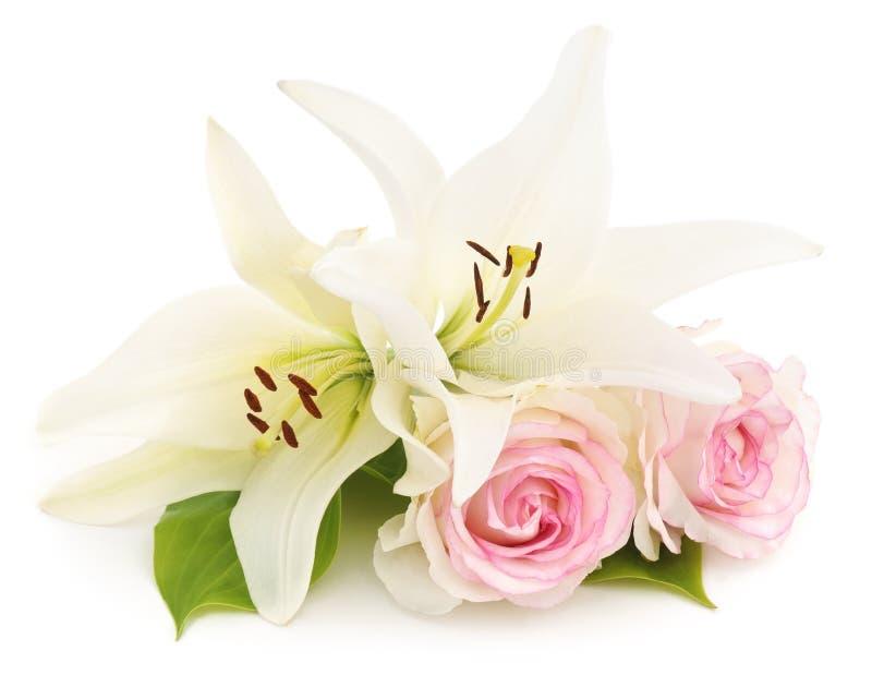 Vita liljor och rosor royaltyfri foto