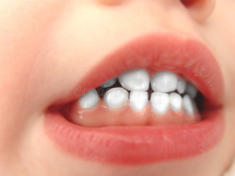 vita lilla tänder royaltyfria bilder