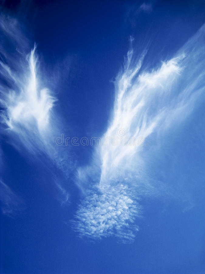 Vita moln i djupblå himmel som vingars form royaltyfria foton