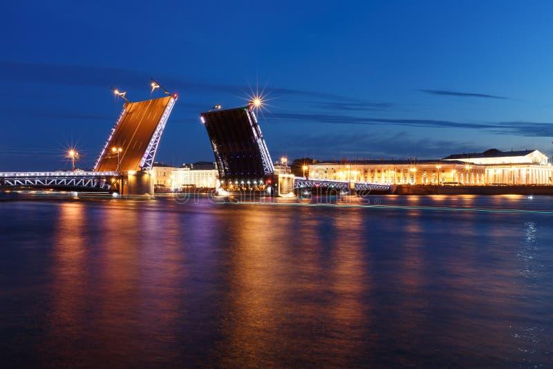 vita nätter Sikt av den Neva floden och den lyftta slottbron i St Petersburg, Ryssland royaltyfria bilder