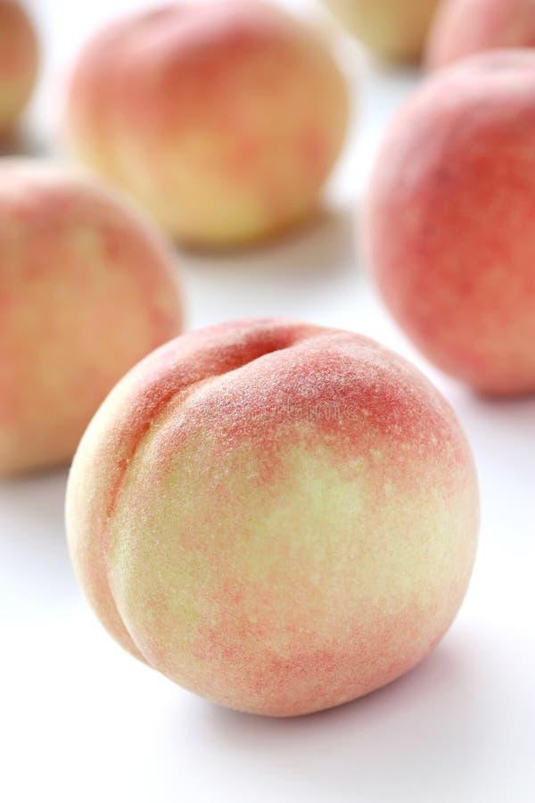 vita nya persikor arkivbilder
