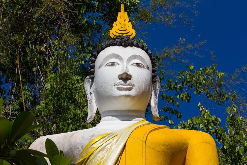 Vita och gula buskar för Buddha royaltyfri bild