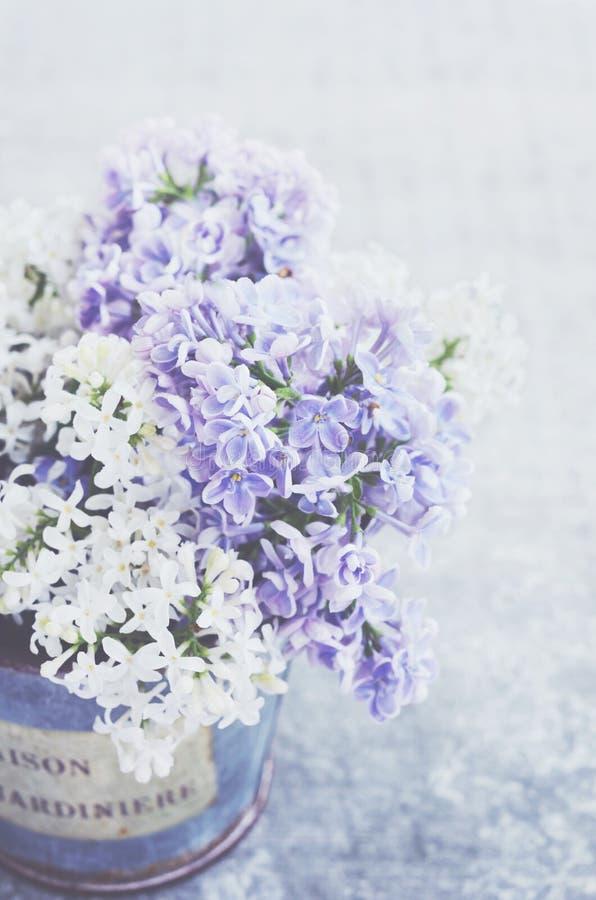 Vita och violetta lila blommor i tappningvas på grå bakgrund arkivfoton