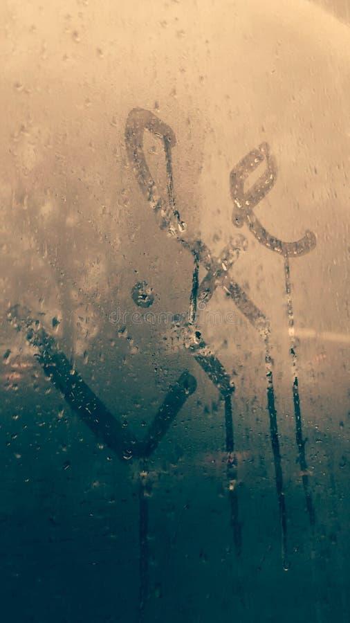 Vita in pioggia fotografie stock