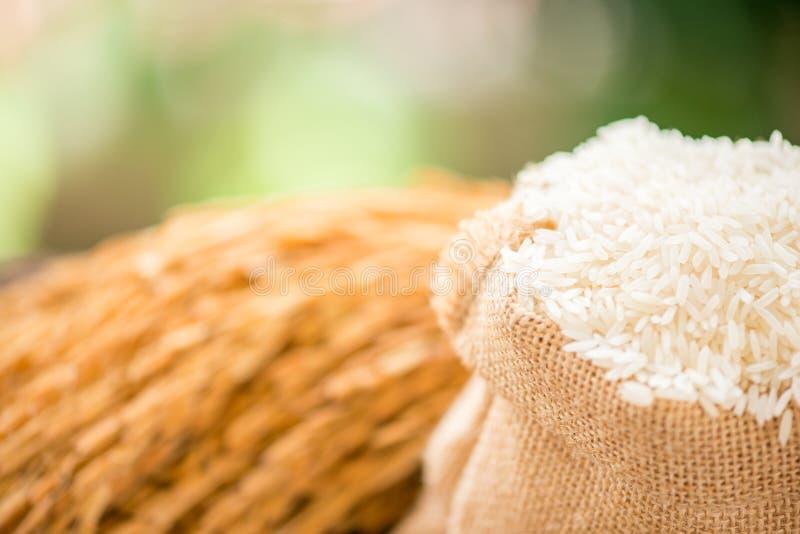 Vita ris i säckvävsäck arkivbilder