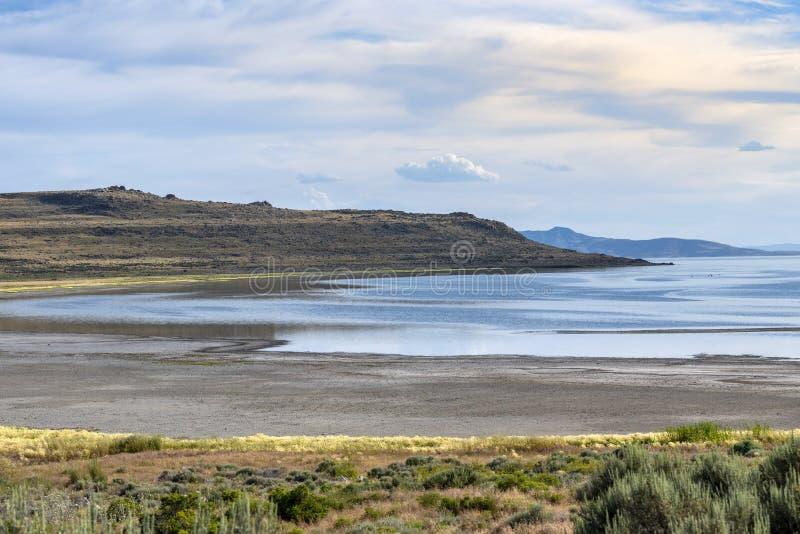 Vita Rock Bay i nationalparken Antelope Island royaltyfri fotografi