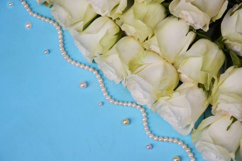 Vita rosor med pärlemorfärg pärlor på blå bakgrund fotografering för bildbyråer