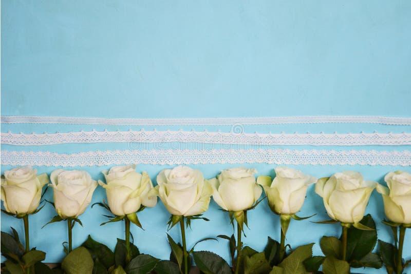 Vita rosor som lokaliseras i linje på blå bakgrund fotografering för bildbyråer