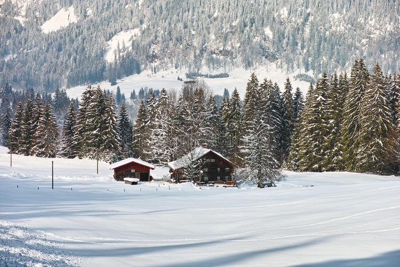 Vita rurale del paesaggio della neve immagine stock