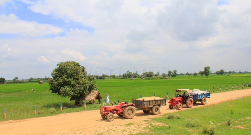 Vita rurale in India: campi di frumento e 2 trattori fotografia stock