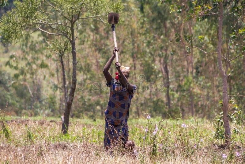 Vita rurale nel Burundi fotografie stock libere da diritti