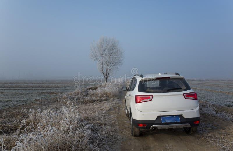 Vita SUV i landsvägen royaltyfri bild