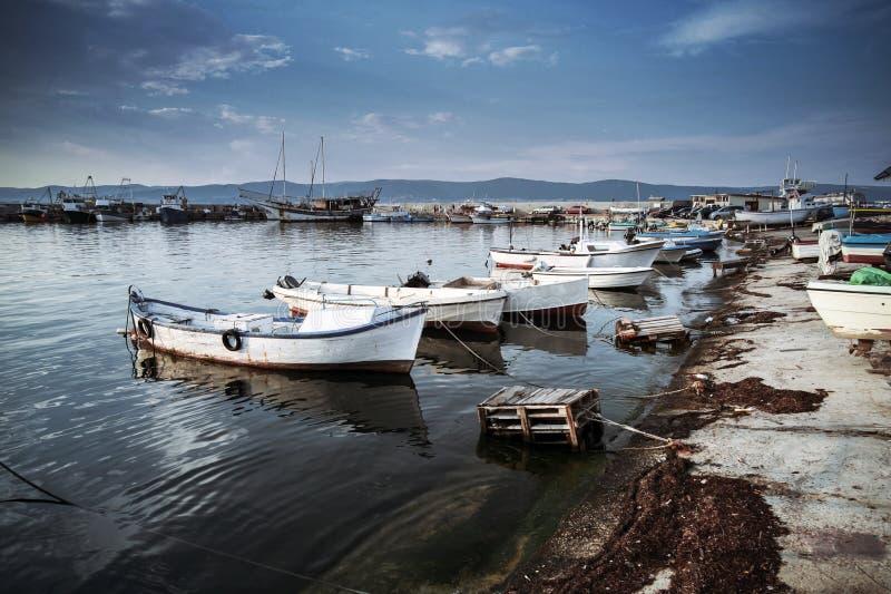 Vita träfiskebåtar förtöjas royaltyfria bilder