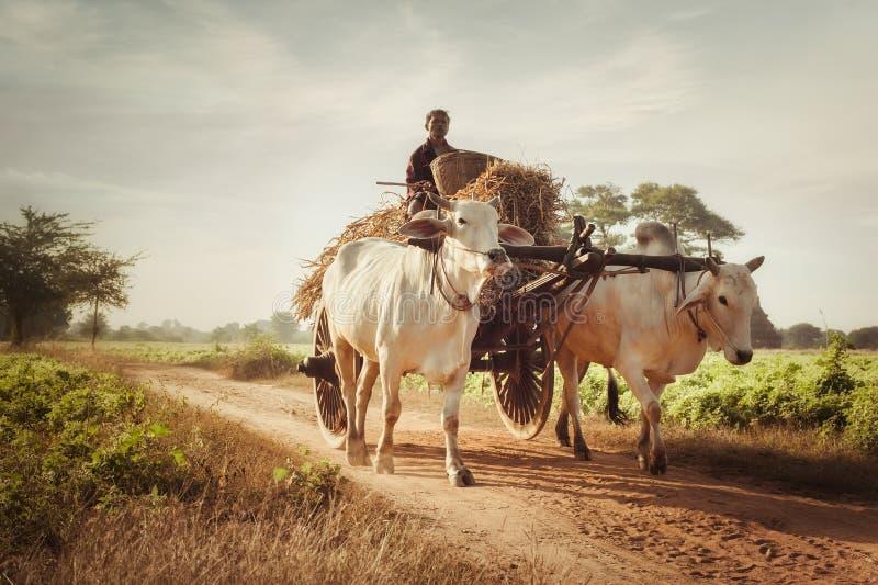 Vita tradizionale del villaggio in campagna asiatica myanmar fotografie stock libere da diritti