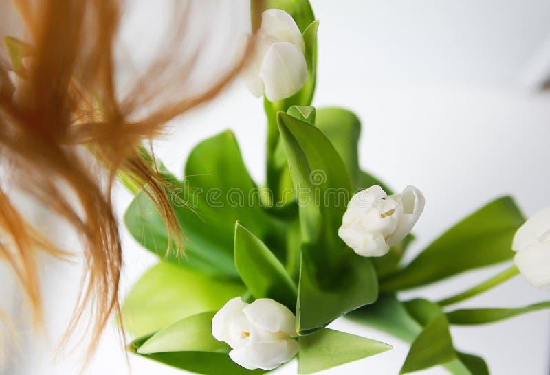 Vita tulpan blommar på en vit bakgrund royaltyfria bilder