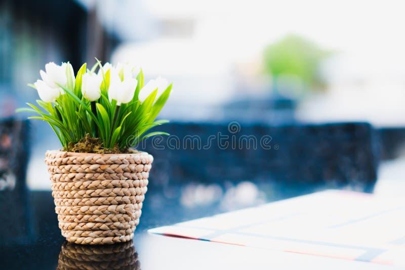 Vita tulpan i blomkruka royaltyfri fotografi