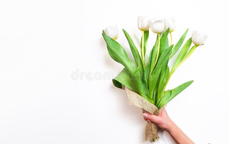 Vita tulpanblommor för vår i en kvinnlig hand på vit bakgrund Väntande på vår kort lyckliga easter Lekmanna- lägenhet, bästa sikt royaltyfria bilder