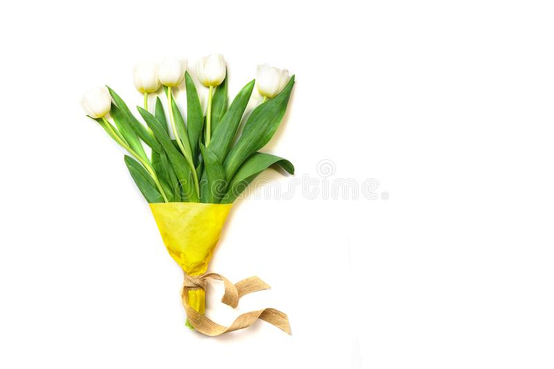 Vita tulpanblommor för vår på vit bakgrund Väntande på vår kort lyckliga easter Lekmanna- lägenhet, bästa sikt kopiera avstånd Be royaltyfria bilder
