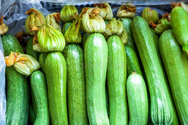 Vita zucchinies arkivfoton