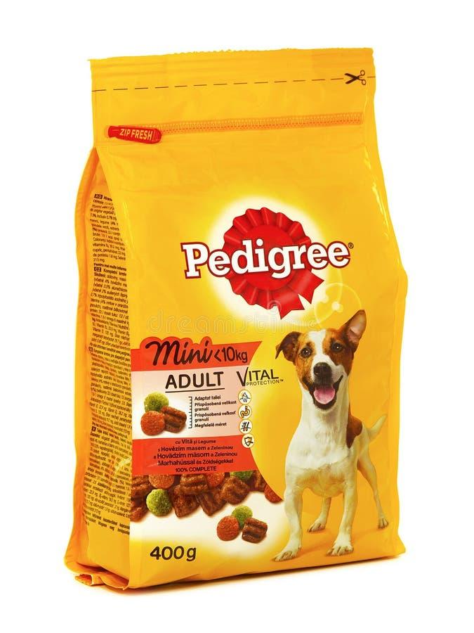 Vital Mini adulte de pure race, nourriture sèche pour de petits chiens adultes image stock