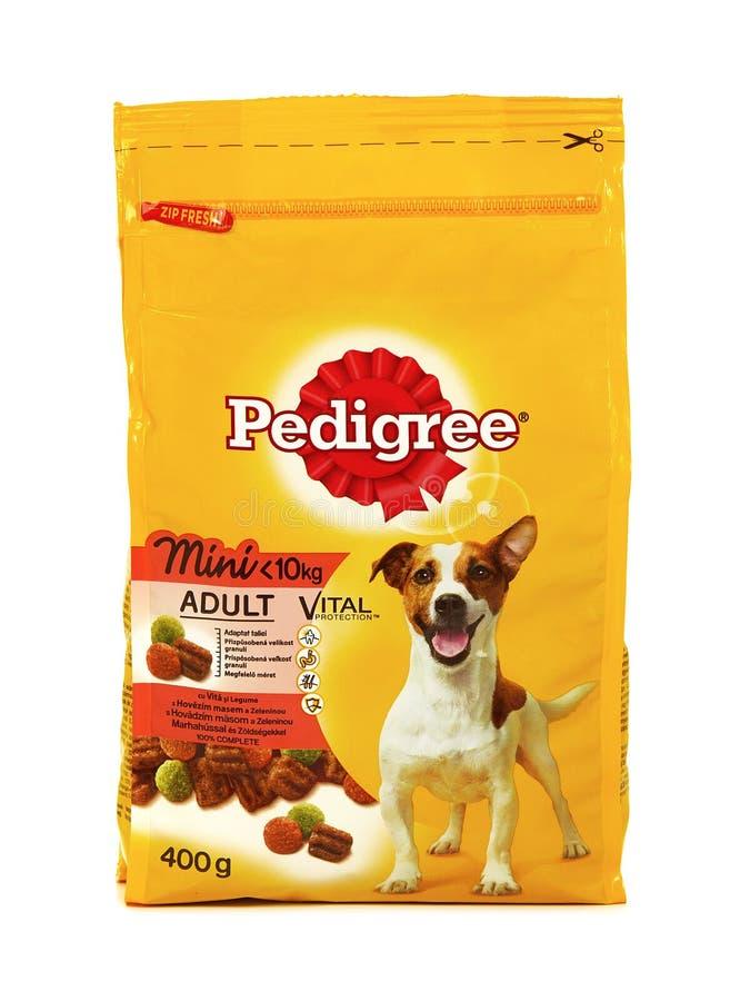 Vital Mini adulte de pure race, nourriture sèche pour de petits chiens adultes photographie stock libre de droits