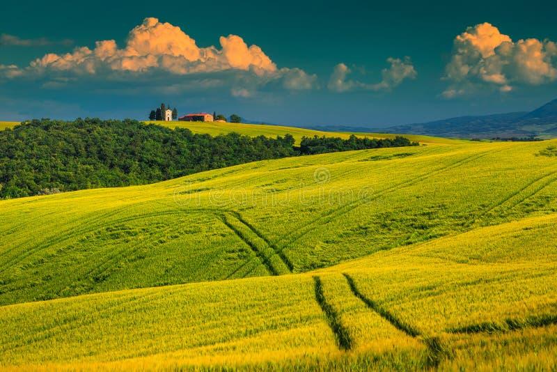 Vitaleta kapell på kullen nära Pienza, Tuscany, Italien, Europa arkivfoto