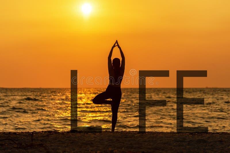 Vitaliteten för fred för kvinnan för meningen för liv för anden för jämviktsmeditationyoga, konturdet fria på solnedgången, koppl fotografering för bildbyråer