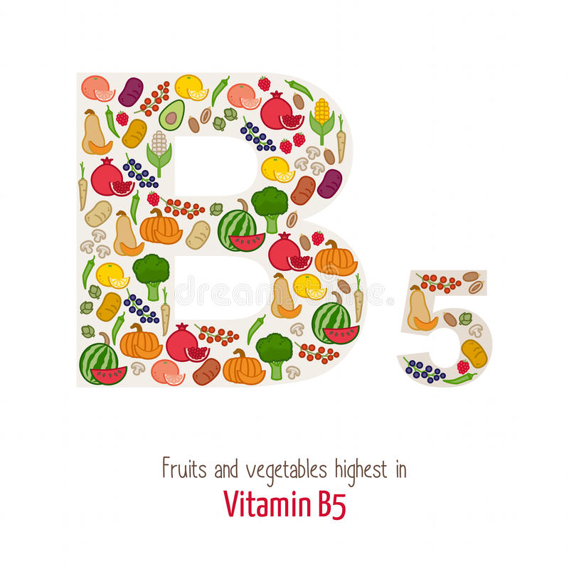 Vitamin B5 vektor illustrationer