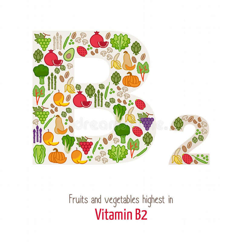 Vitamin B2 vektor illustrationer
