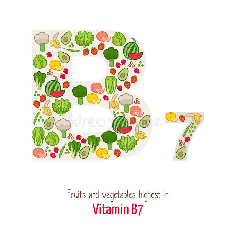 Vitamin B7. Fruits and vegetables highest in vitamin B7 composing B7 letter shape, nutrition and healthy eating concept vector illustration
