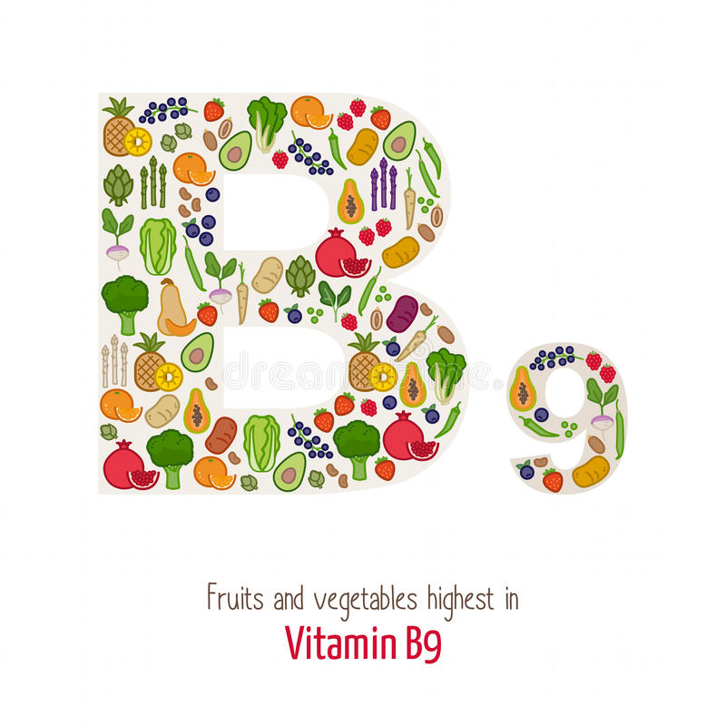 Vitamin B9. Fruits and vegetables highest in vitamin B9 composing B9 letter shape, nutrition and healthy eating concept vector illustration
