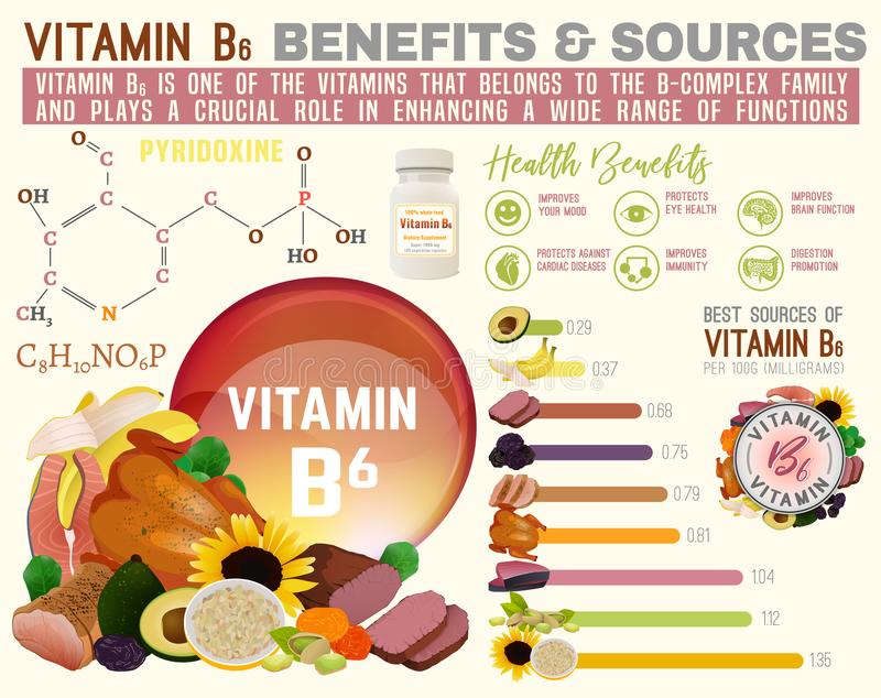 Vitamin B6 Infographic vektor illustrationer