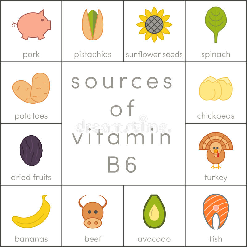 Vitamin B6. Sources of vitamin B6, food icons for infographic stock illustration