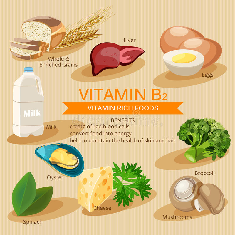 Vitamin B2. Vitamins and minerals foods. Vector flat icons graphic design. Banner header illustration. Vitamin B2. Vitamins and minerals foods. Vector flat royalty free illustration