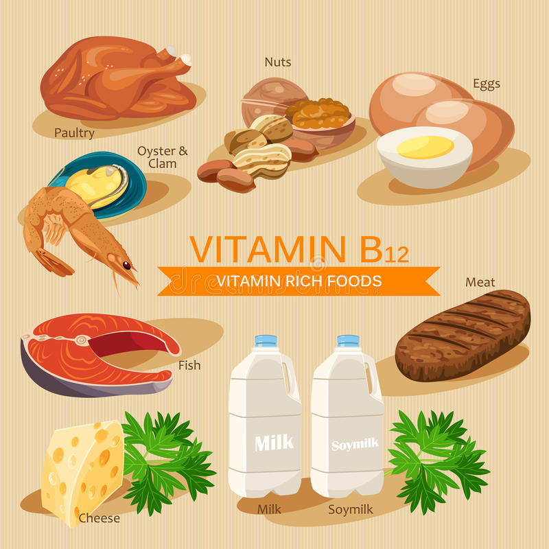 Vitamin B12. Vitamins and minerals foods. Vector flat icons graphic design. Banner header illustration. Vitamin B12. Vitamins and minerals foods. Vector flat royalty free illustration