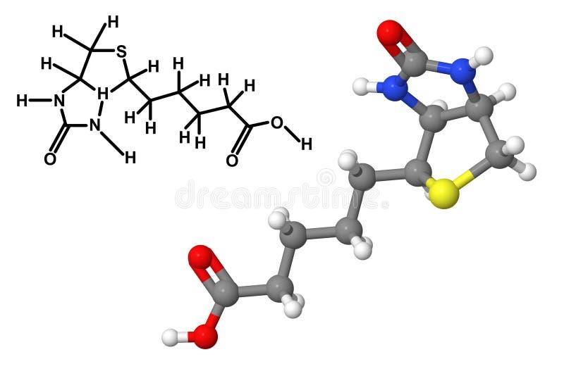Download Vitamin B7 Molecule With Chemical Formula Stock Illustration - Illustration: 37620487