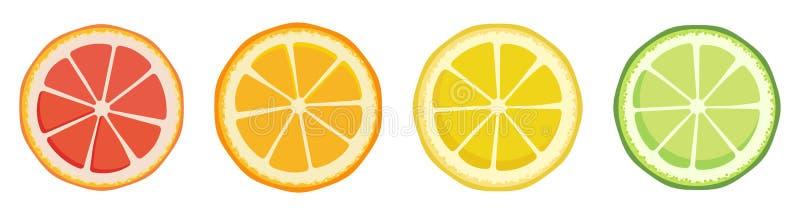 Vitamin C. Set of vector isolated elements. Bright fresh ripe juicy grapefruit orange lemon lime slices isolated on a stock illustration