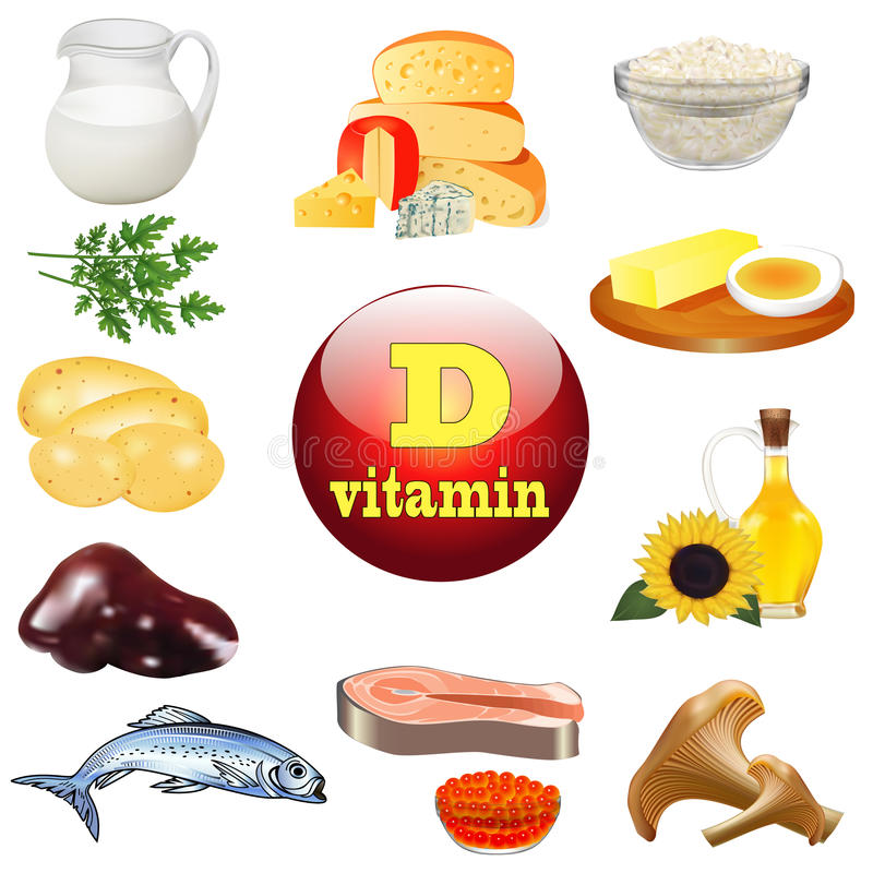 Vitamin d and plant and animal products royalty free illustration